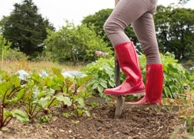 Person in a garden wearing red boots.